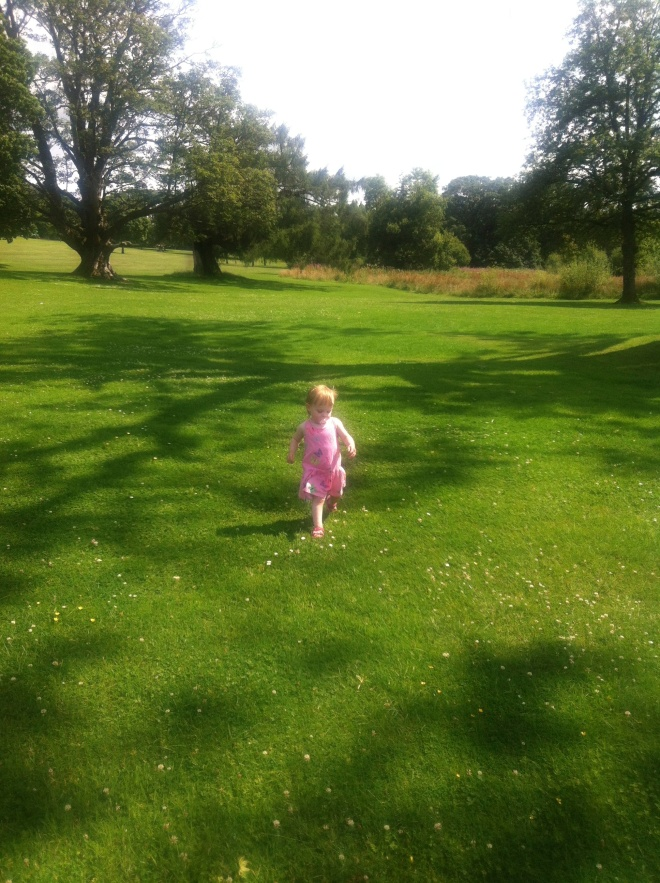 A photo that sums up the pure enjoyment a little girl will get from just running in fields in the sunshine